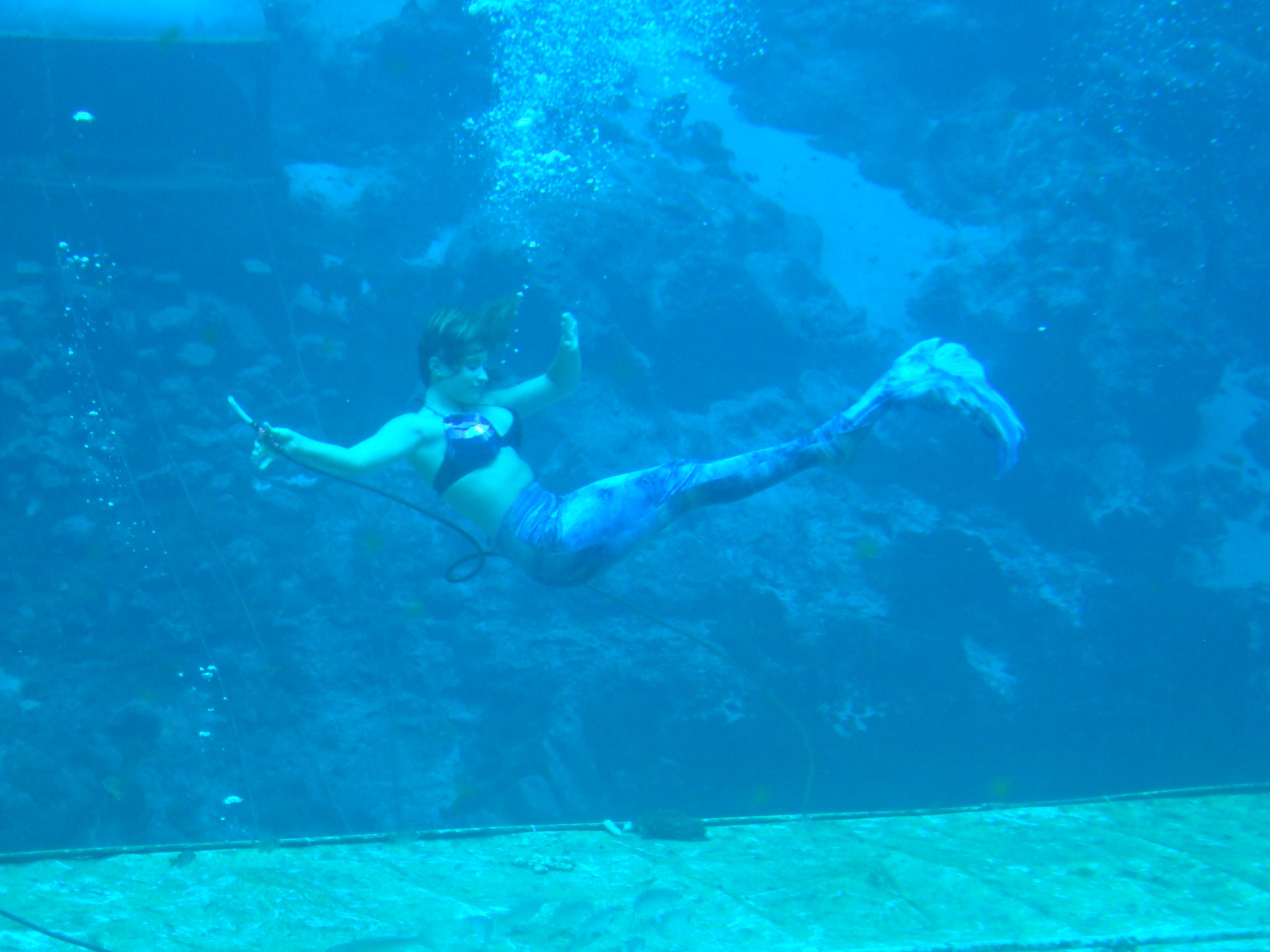 weeki watchee mermaids