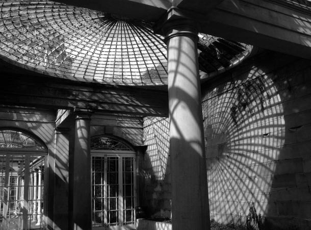 Conservatory Cobwebs by Kitten von Mew