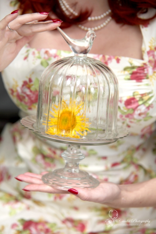Glass Bird Bell Jar and Cake Stand