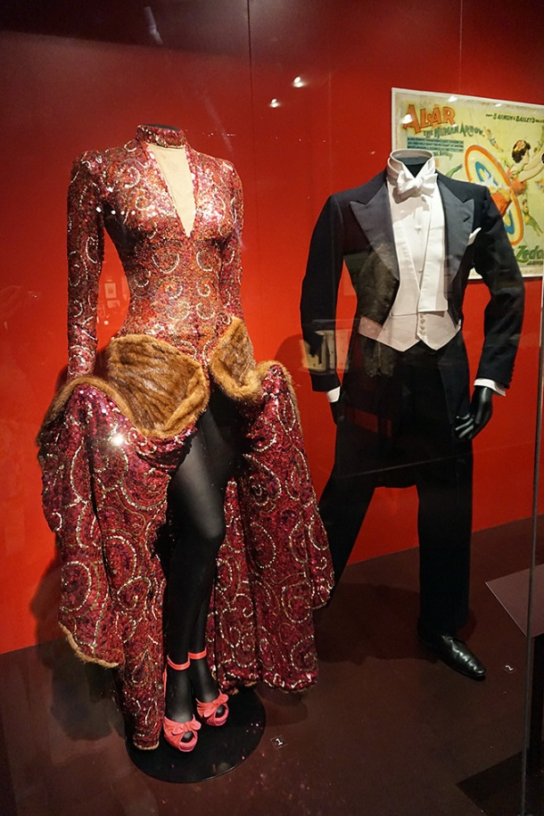 victoria-and-albert-museum-movie-gown
