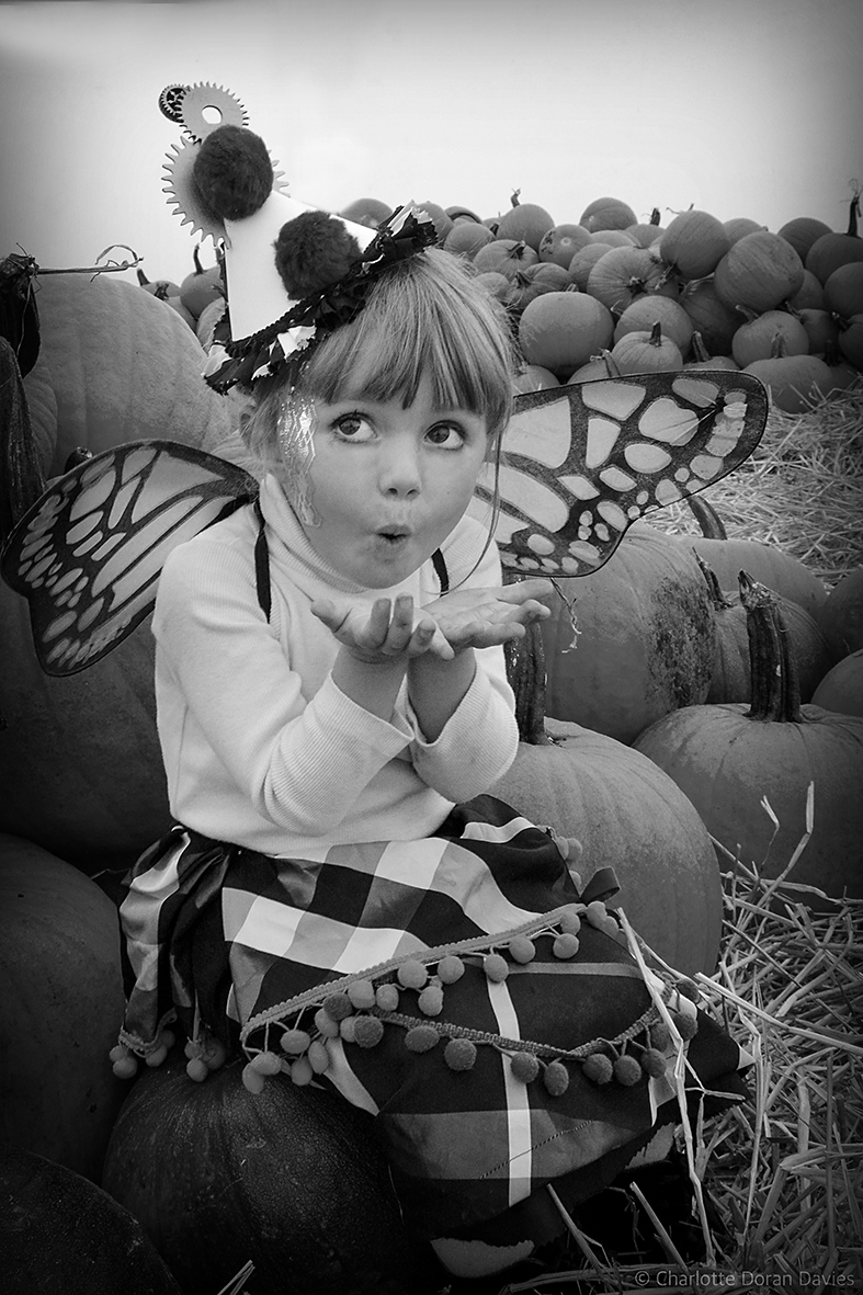 009 Pumpkins bw web